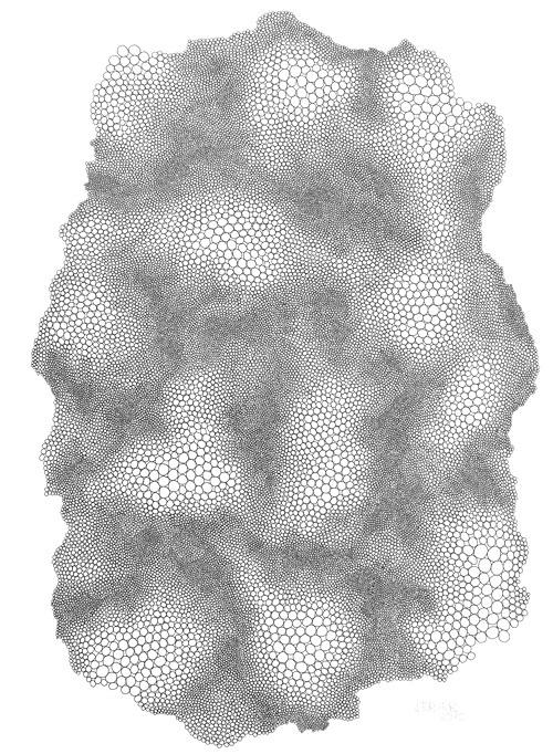 P1060642-Kreise-I-28-x-39-cm-Tusche